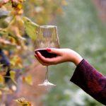 美人が嗜む赤ワイン習慣♡優秀すぎる美容効果3つ!