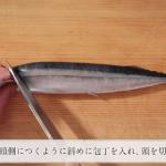 ちゃんとできてる?正しい魚介類の下処理とさばき方教えちゃいます♪