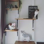 猫好き集合!大切な猫ちゃんと快適に暮らすアイディア&インテリアまとめ☆