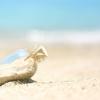 【心理テスト】海岸に流れ着いたビンの中身は?選択肢で分かるあなたが幸せをつかむ方法♪