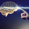 【脳タイプ診断】あなたはどっち?「男性脳」or「女性脳」