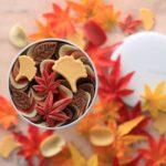 【2021最新】#秋のお取り寄せスイーツ 10選|ギフトや手土産にもおすすめ人気のおしゃれお菓子を厳選