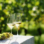 女子会におすすめの人気白ワイン10選|合う料理やおつまみも合わせてご紹介♪