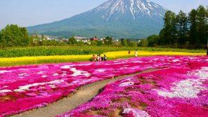 春に行きたいおすすめの旅行先12選♡グルメから絶景スポットまで♪